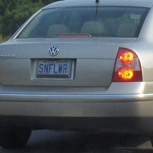 SNFLWR
