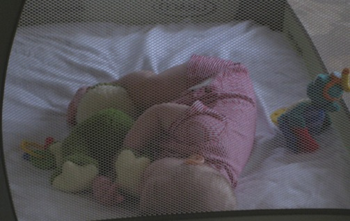 Sleeping with Ribbit