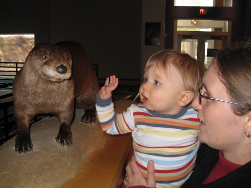 Should I otter touch that, Mommy?