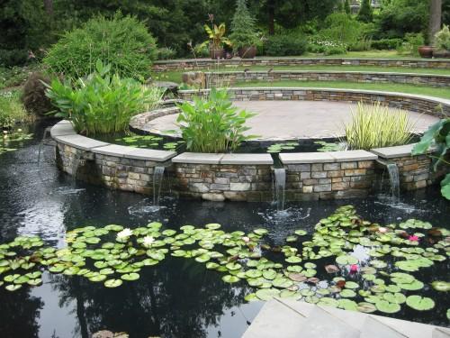 Duke Gardens Pond