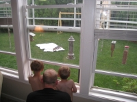 Hudson and Henry watching a fox in the backyard