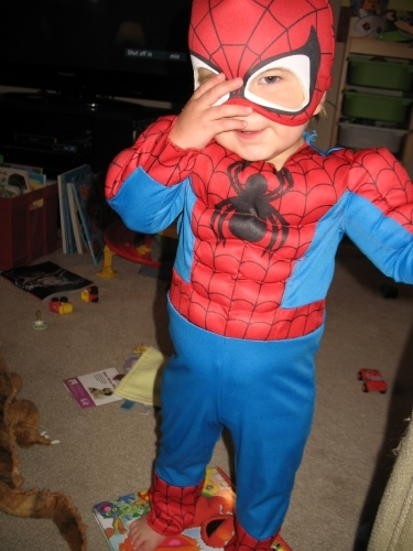 Linus as Spider Man